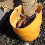 pebble bucket