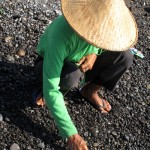 woman collecting small pebbles