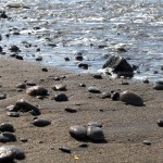 Pantai Saba, beach where black pebbles come from